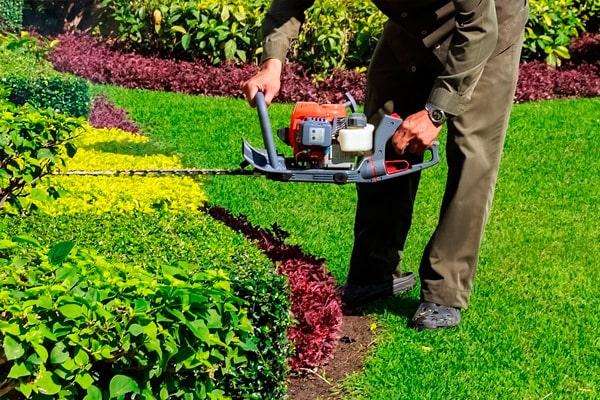Alquiler de herramientas de jardinería