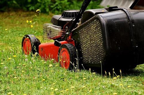 herramientas jardín madrid para cortar césped en mal estado