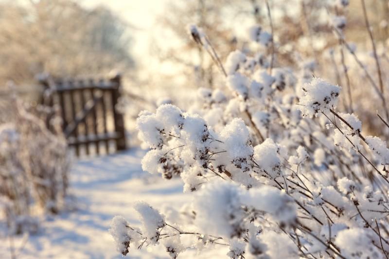 herramientas invierno alquiler