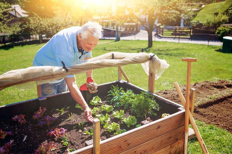 alquiler herramientas jardinería Madrid