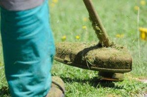 alquiler herramientas jardín madrid para césped en mal estado