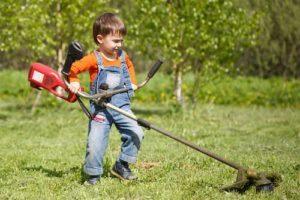 Alquileres Majo tiene las herramientas de jardinería que necesitas este otoño