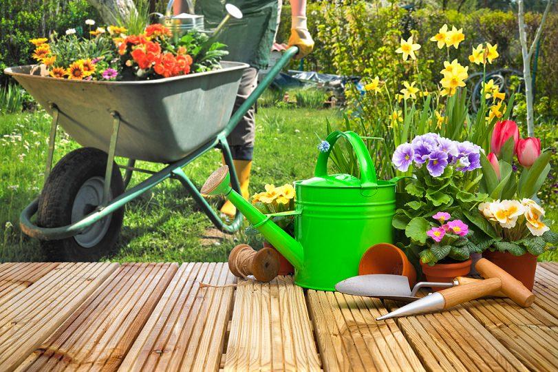 herramientas de jardinería para verano