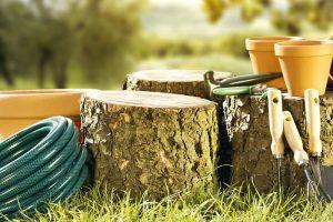 necesitas estas herramientas de jardinería este verano para cortar leña
