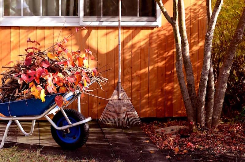Las mejores herramientas de jardinerías para cuidar tu jardín este otoño