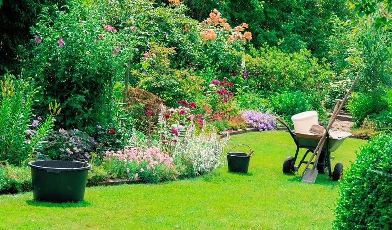 Alquiler de herramientas - jardin primavera