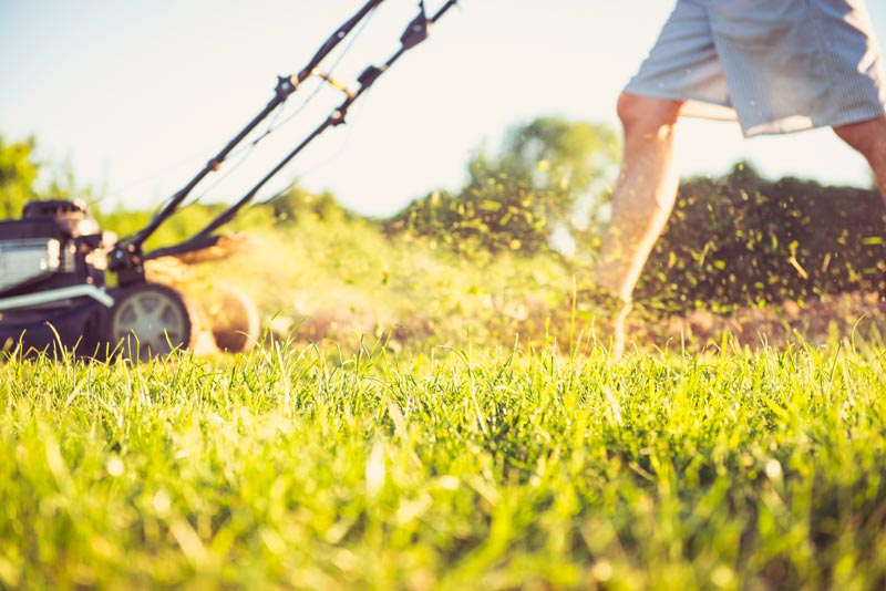 Te contamos los beneficios de alquilar un cortacésped para tu jardín