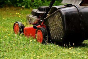 beneficios de alquilar un cortacésped para tu jardín