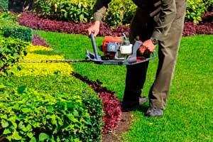Herramientas para jardín