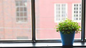Para tu oficina en casa, colócate cerca de una ventana para aprovechar la luz natural